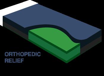 pet_orthopedic_click